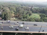 Mumbai: NGT seeks clarity on forest area status of Aarey colony