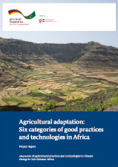 Agricultural adaptation: Six categories of good practices and technologies in Africa