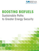 Boosting biofuels: sustainable paths to greater energy security