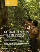 Climate benefits, tenure costs: the economic case for securing indigenous land rights in the Amazon