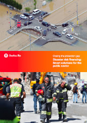 Closing the protection gap - disaster risk financing: smart solutions for the public sector