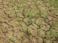 Drought shadow looms over deep south