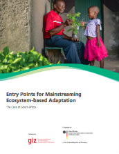 Entry points for mainstreaming ecosystem-based adaptation: the case of South Africa