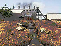 Steel pickling units cannot operate in residential areas: Delhi government tells NGT