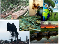 India ranks 4th lowest in environment report