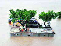 Banaskantha floods: Gujarat HC seeks govt's reply over farmers' demand for compensation