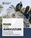 Food and agriculture: key to achieving the 2030 Agenda for Sustainable Development