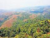 Telangana: Vikarabad forest under threat