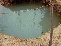 Study: Bacteria reduces concentration of arsenic in groundwater