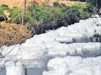 'Fly ash a cheap solution to Bellandur lake's pollution'