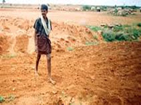 Gujarat farmers vow to protect their land