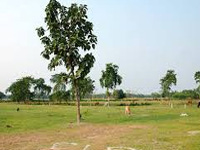 Haryana revokes land acquisition