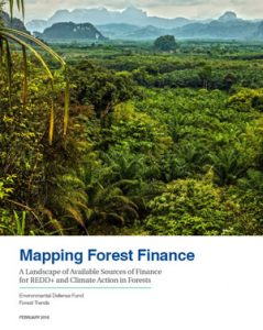 Mapping forest finance: a landscape of available sources of finance for REDD+ and climate action in forests