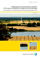 Mapping and assessing the condition of Europe's ecosystems: progress and challenges