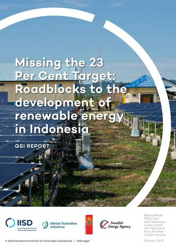Missing the 23 per cent target: roadblocks to the development of renewable energy in Indonesia
