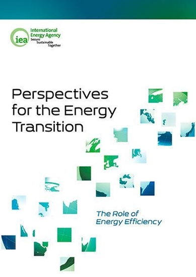 Perspectives for the energy transition: the role of energy efficiency