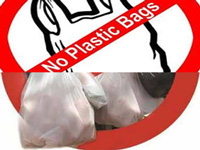 NGT ignored: Use of thin plastic bags continues, manjha ban defied