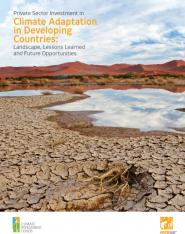 Private sector investment in climate adaptation in developing countries: landscape, lessons learned and future opportunities