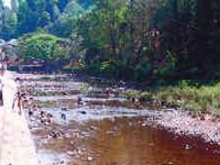 Capturing Pamba at its polluted worst