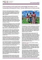 Understanding social equity and sustainability interactions in the Sustainable Development Goals: Gender differences in food security