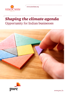 Shaping the climate agenda: opportunity for Indian businesses