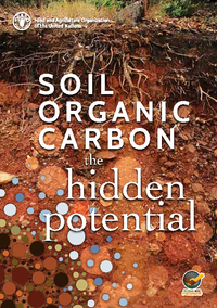Soil Organic Carbon: the hidden potential