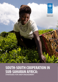 South-South Cooperation in sub-Saharan Africa: strategies for UNDP engagement