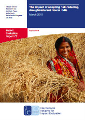 The impact of adopting risk-reducing, drought-tolerant rice in India