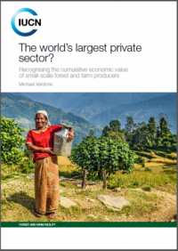 The world's largest private sector?: recognising the cumulative economic value of small-scale forest and farm producers