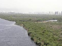 12 waterbodies in city to be desilted below sea level