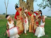 Carbon-free travel in Majuli this Bihu