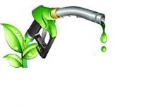 Bamboo to ethanol, India's biofuel industry to explode into a $15 bn market