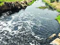 Action group formed in Faridkot to check canal water toxicity