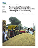 The impacts of reforms to the public distribution system in India's Chhattisgarh on food security