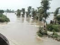 Nepal dams release water, UP rivers play havoc; 48 dead, 1,000 villages marooned