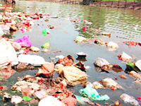 Ganga's plight is no different from that of the 'holy cow'