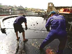 Cleanup of oil spill begins in Lebanon