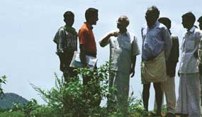 High yields in Andhra`s pesticide free village