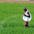 Fertilizer subsidy in India: who are the beneficiaries?