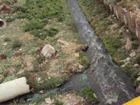 NGT pulls up UP, U'khand on river pollution