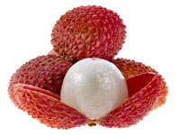 Toxin makes litchi lethal, especially for kids: Study