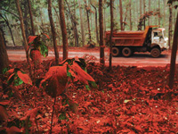 SAIL, Jharkhand govt had opposed Centre's Saranda forest mining plan