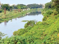 Government expects green nod to speed up eco-restoration of Cooum