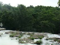 Ken-Betwa river link project to impact Panna Tiger Reserve: EAC