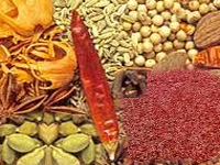 Say goodbye to monsoon illness with these 4 Indian spices