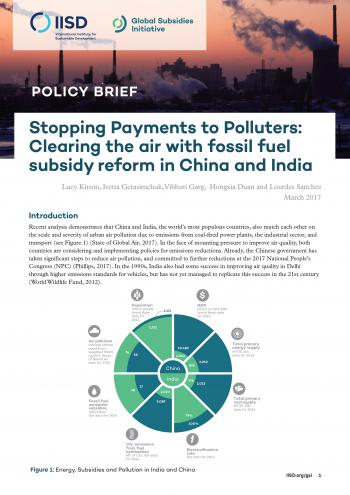 Stopping payments to polluters: clearing the air with fossil fuel subsidy reform in China and India