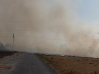 Vans to create awareness against stubble burning