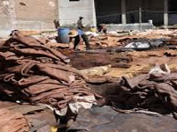 NGT allows conditional operation of 2 tanneries
