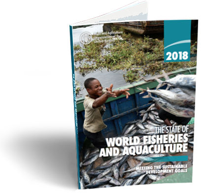 The State of World Fisheries and Aquaculture 2018:  meeting the sustainable development goals.