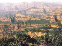 NGT Not Happy with Min's Plan for Protecting Western Ghats